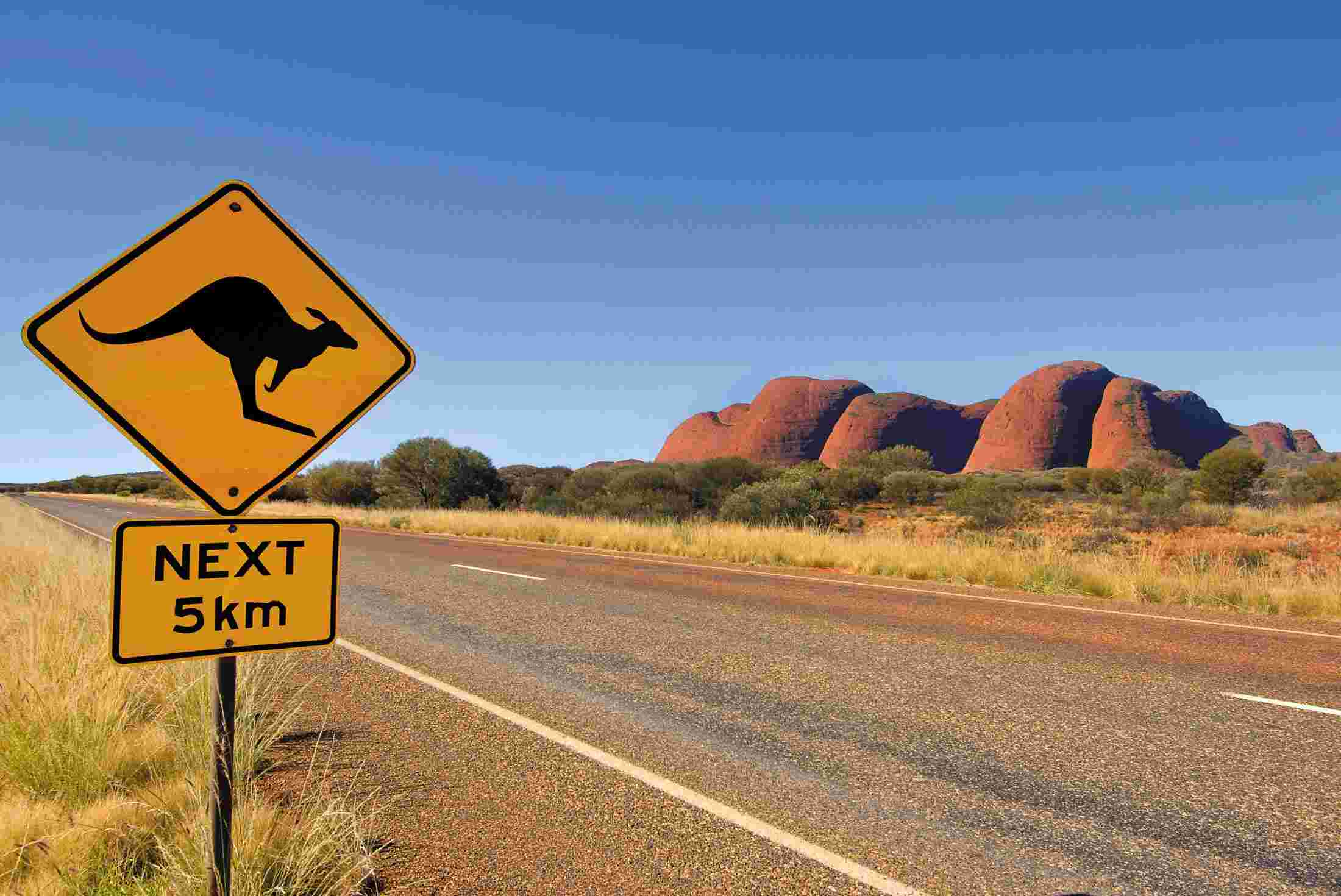 australia northern territory kangaroo road sign kata tjuta